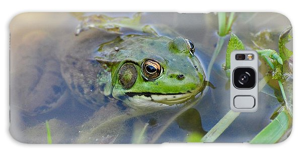 Frog Hiding In The Pond Galaxy Case