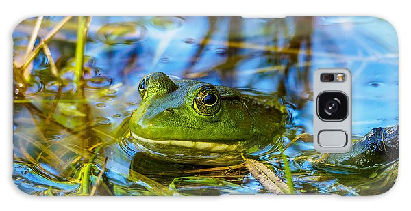 Frog In My Pond Galaxy Case