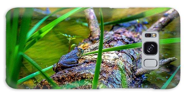 Frog On A Log 1 Galaxy Case