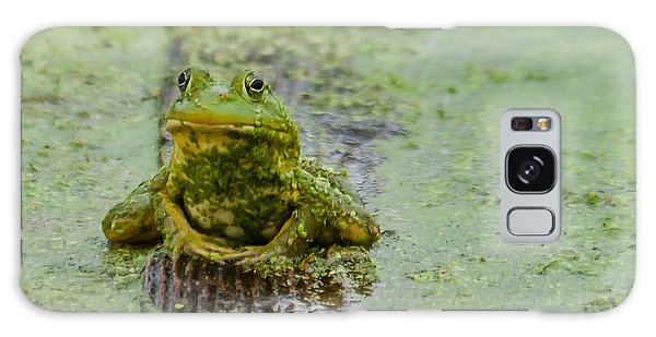 Frog On A Plank Galaxy Case by Edward Peterson