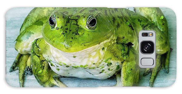 Frog Portrait Galaxy Case by Edward Peterson