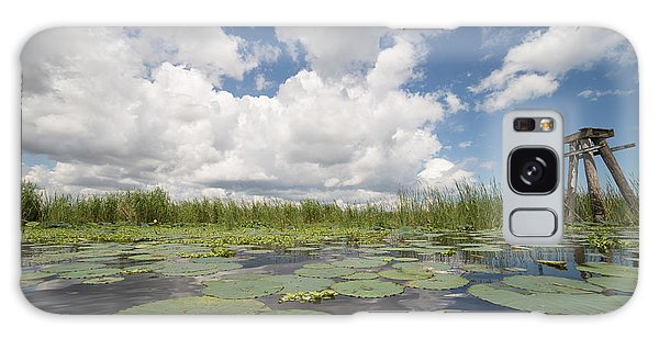From A Frog's Point Of View - Lake Okeechobee Galaxy Case by Christopher L Thomley
