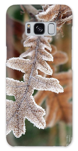 Frost Covered Oak Leaf Galaxy Case