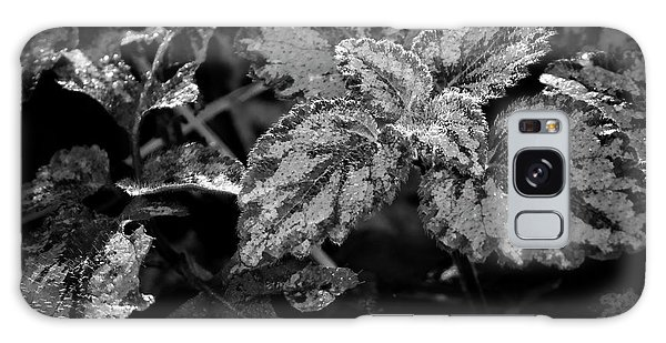 Frosted Hosta Galaxy Case