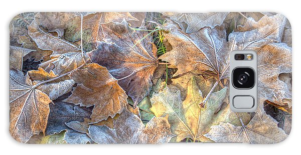 Frosted Leaves 8x10 Galaxy Case