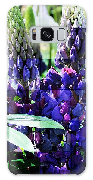 Frosted Purple Lupines Galaxy Case