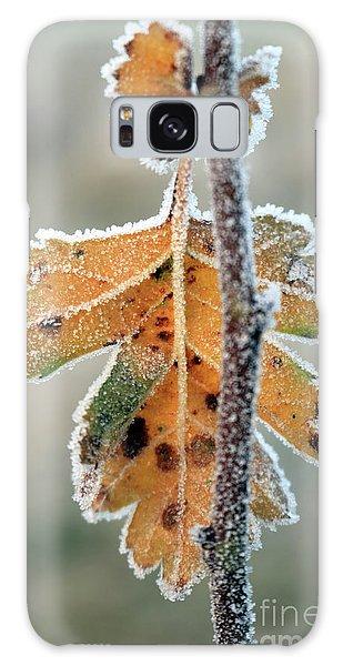 Frosty Leaf Galaxy Case
