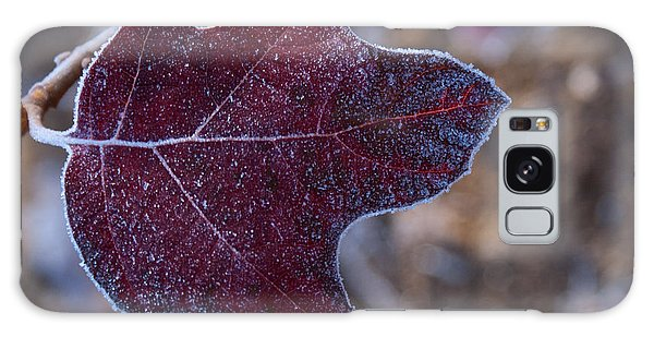 Crossville Galaxy Case - Frosty Maroon Leaf by Douglas Barnett