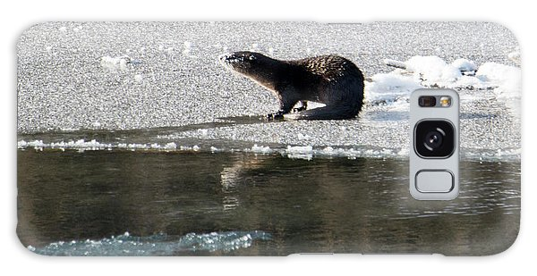 Otter Galaxy Case - Frosty River Otter  by Mike Dawson