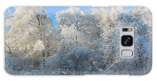 Frosty Trees Galaxy Case