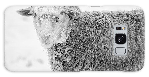 Sheep Galaxy Case - Frozen Dinner by Mike  Dawson