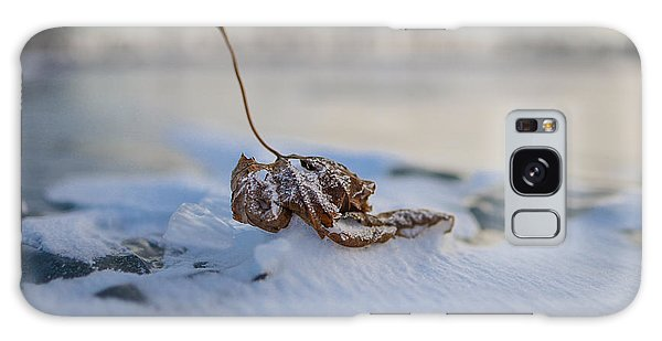 Frozen Leaf On Lake Reno Galaxy Case