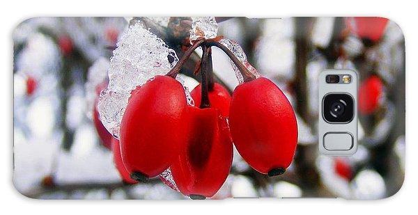 Frozen Red Berries Galaxy Case
