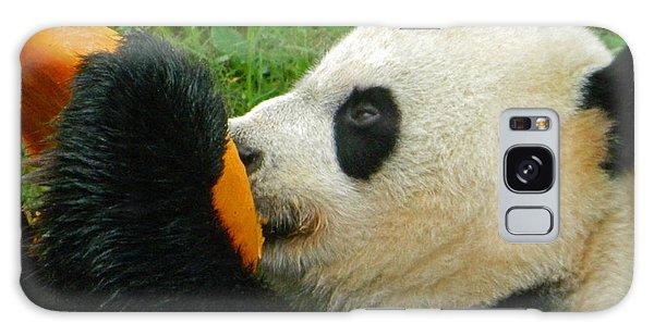 Frozen Treat For Mei Xiang The Giant Panda Galaxy Case