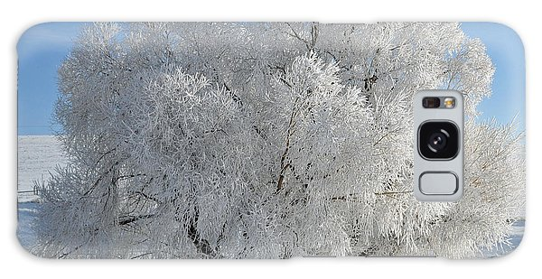 Frozen Tree Galaxy Case