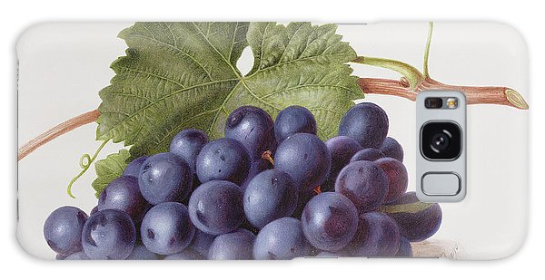 Bar Galaxy Case - Fruit Of The Vine by Augusta Innes Withers