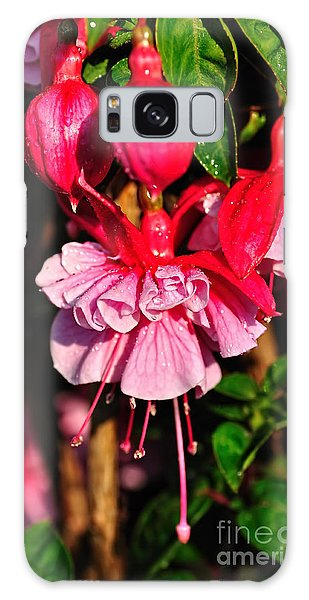 Fuchsias With Droplets Galaxy Case