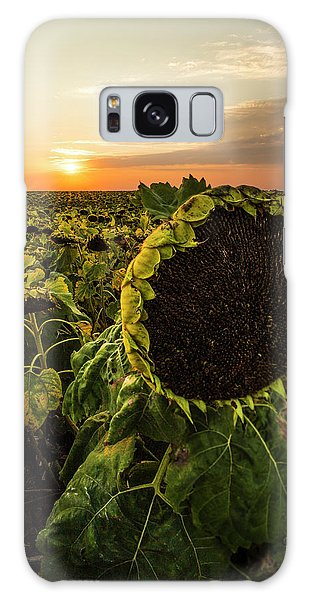 Galaxy Case featuring the photograph Full Of Seed  by Aaron J Groen