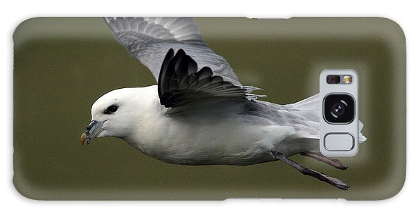 Fulmar In Flight Galaxy Case