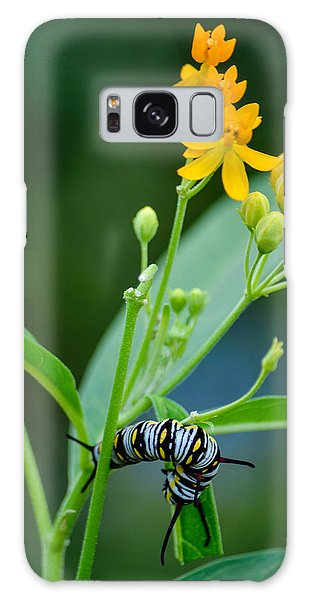 Future Monarch Galaxy Case