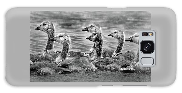 Gaggle Of Goslings Galaxy Case