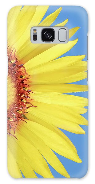 Gaillardia Aristata   Blanketflower Galaxy Case by Jim Hughes