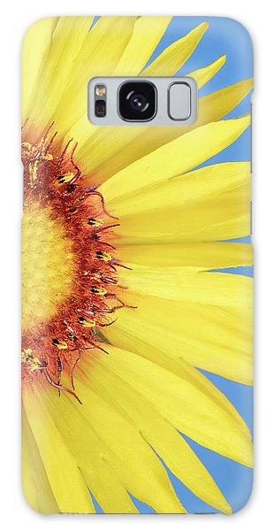 Gaillardia Aristata   Blanketflower Galaxy Case