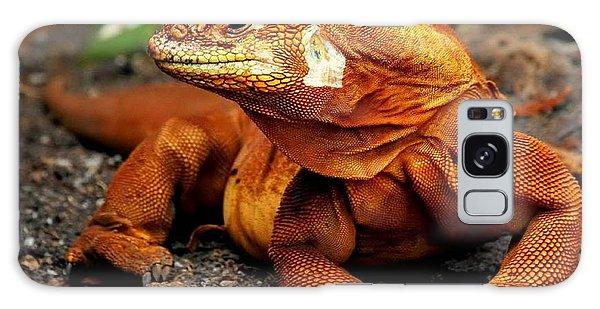 Galapagos Iguana Galaxy Case by Rod Jellison