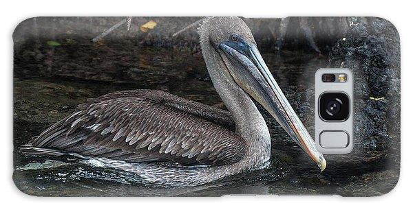 Galapagos Pelican Galaxy Case