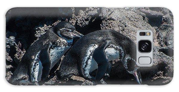 Galapagos Penguins  Bartelome Bartholomew Island Galapagos Islands Galaxy Case