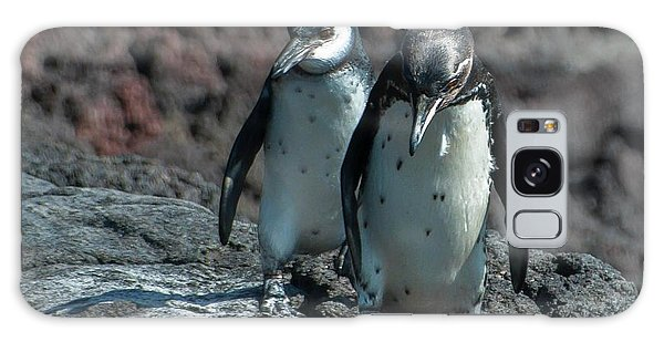 Galapagos Penguins  Bartelome Island Galapagos Islands Galaxy Case
