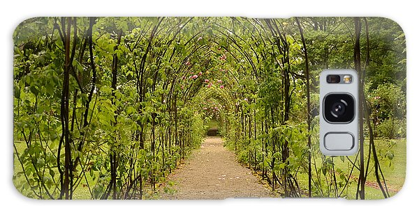 Garden Archway Galaxy Case by Martina Fagan