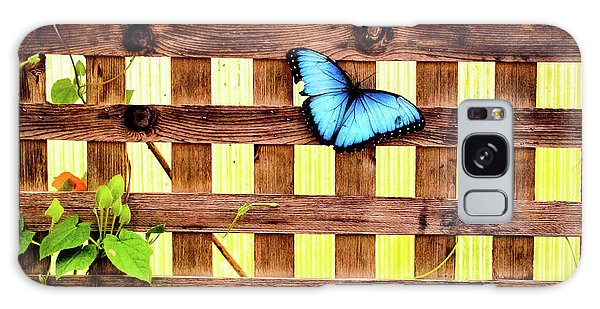 Garden Fence Galaxy Case