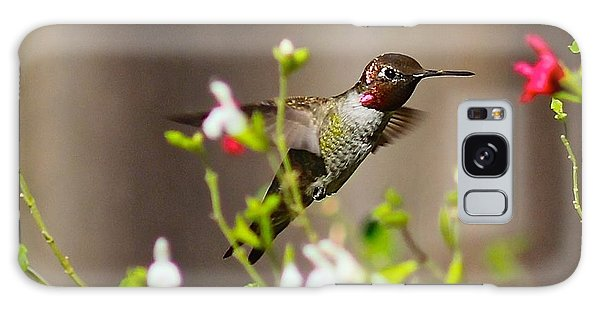Garden Hummingbird Galaxy Case