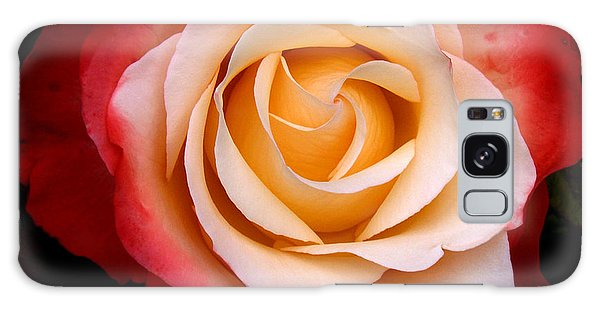 Galaxy Case featuring the photograph Garden Rose by Luc Van de Steeg