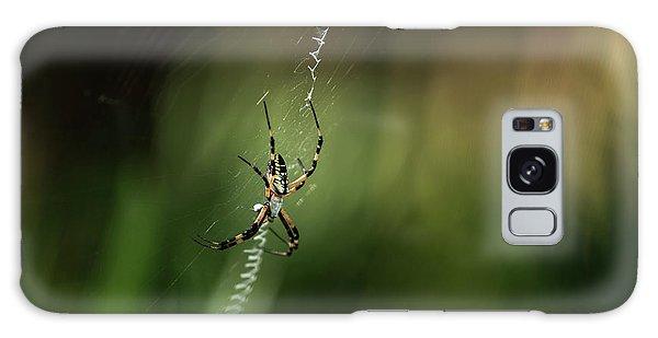 Garden Spider Galaxy Case