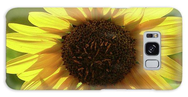 Garden Sunshine Galaxy Case