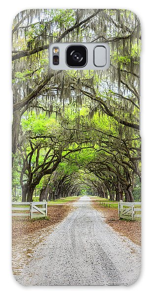 Outdoor Dining Galaxy Case - Gated Wormsloe Plantation by Jon Glaser