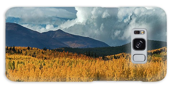 Gathering Storm - Park County Co Galaxy Case