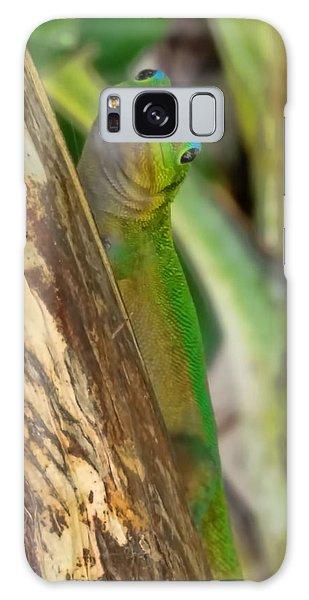 Gecko Up Close Galaxy Case