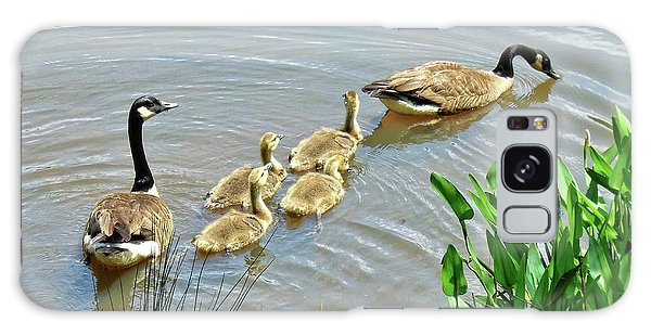 Geese And Goslings Galaxy Case