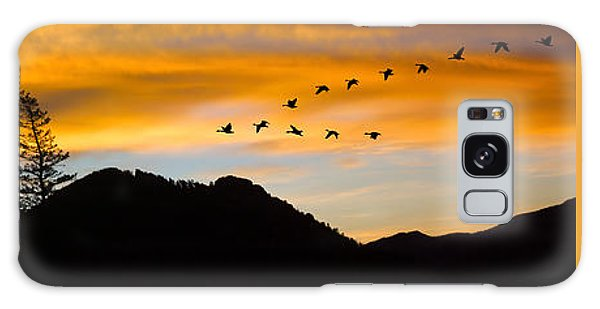 Geese At Sunrise Galaxy Case
