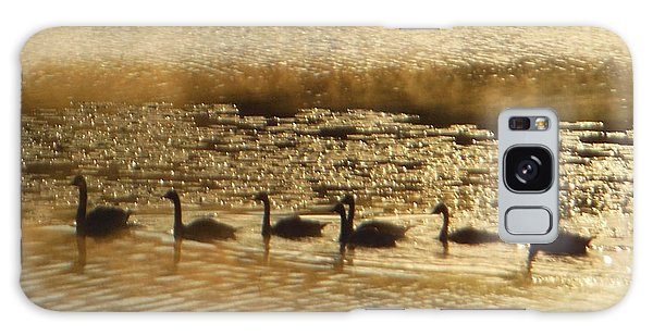 Geese On Golden Pond Galaxy Case