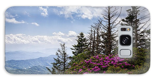 Rhododendrons - Roan Mountain Galaxy Case
