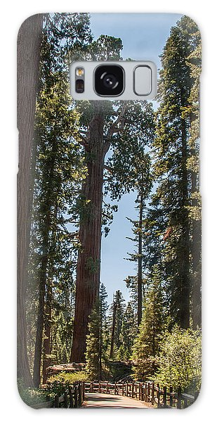General Grant Tree Kings Canyon National Park Galaxy Case