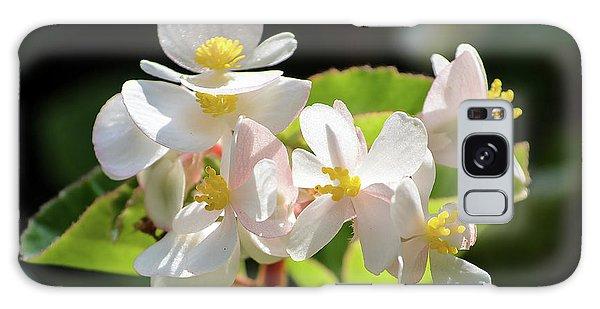 Gentle Bloom Galaxy Case