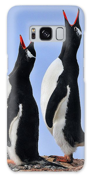 Gentoo Love Song Galaxy Case