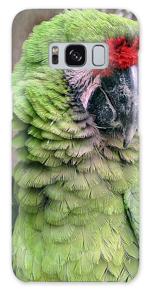 George The Parrot Galaxy Case