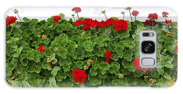 Cottage Galaxy Case - Geraniums On Window by Elena Elisseeva