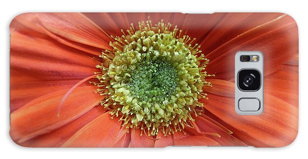 Gerber Daisy Galaxy Case